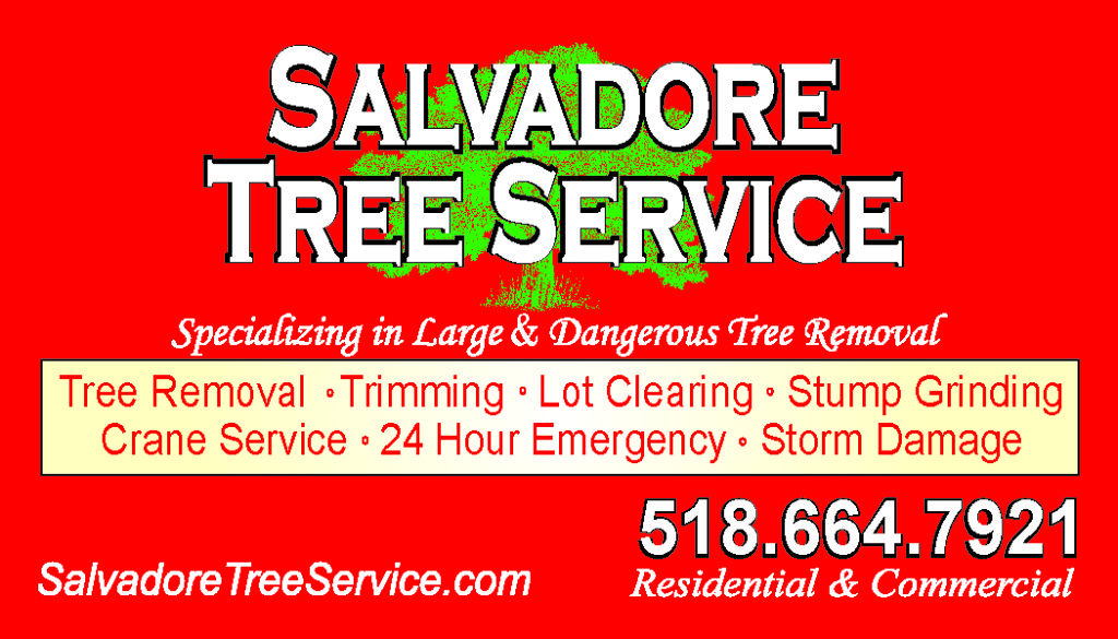Salvadore Tree Service Malta New York